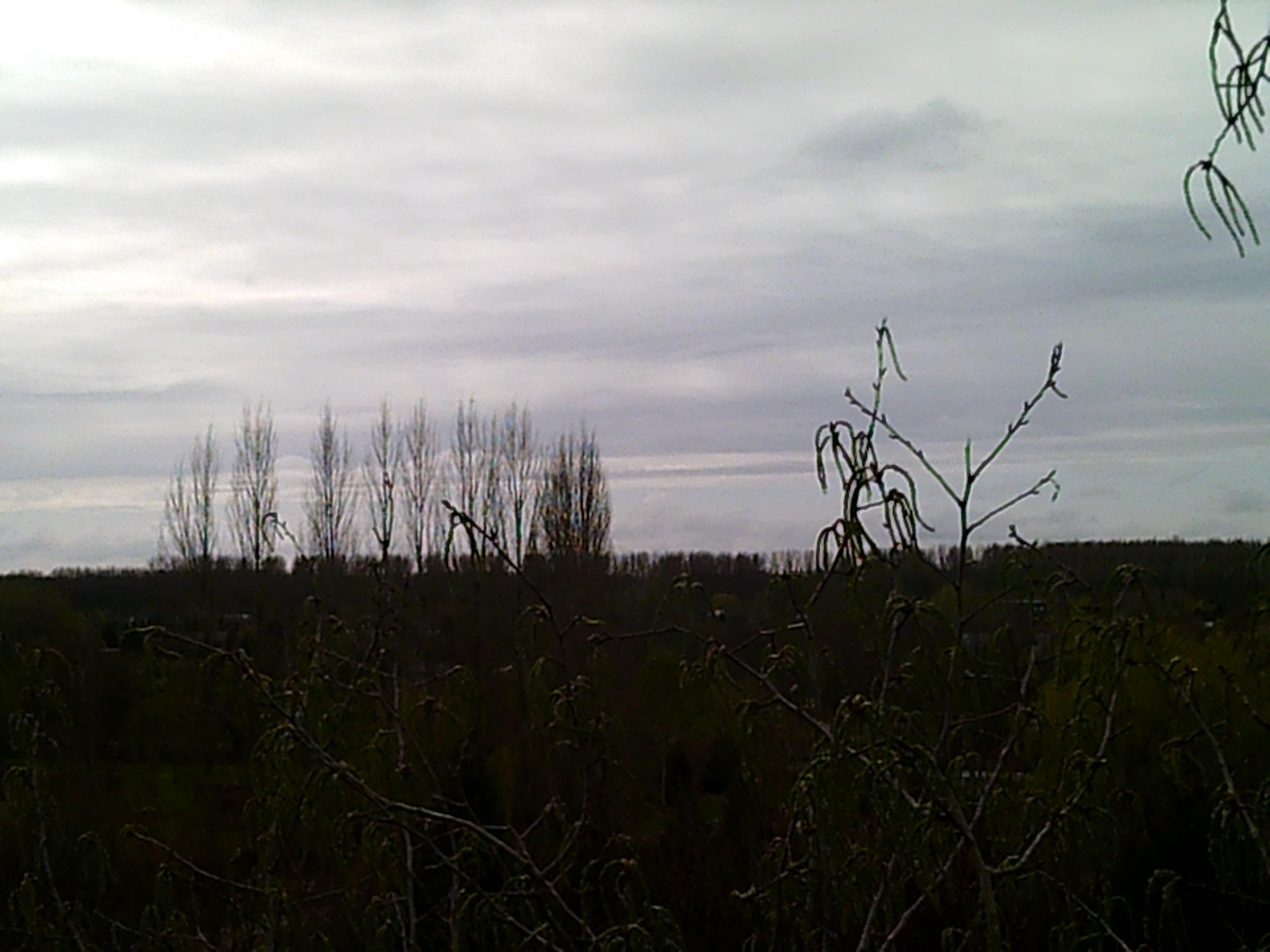 uitzicht vanuit de witte abeel